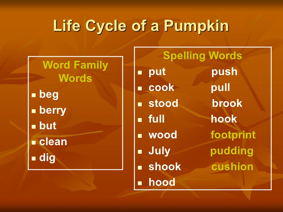 Life Cycle of a Pumpkin Spelling Words Word Family Words put push