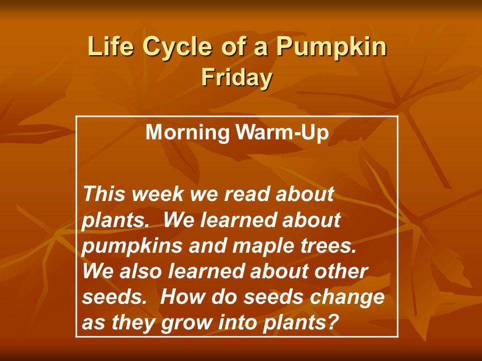 Life Cycle of a Pumpkin Friday