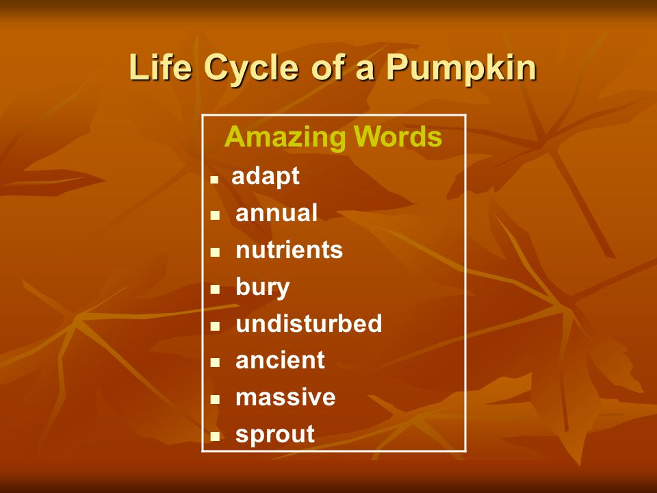 Life Cycle of a Pumpkin Amazing Words annual nutrients bury