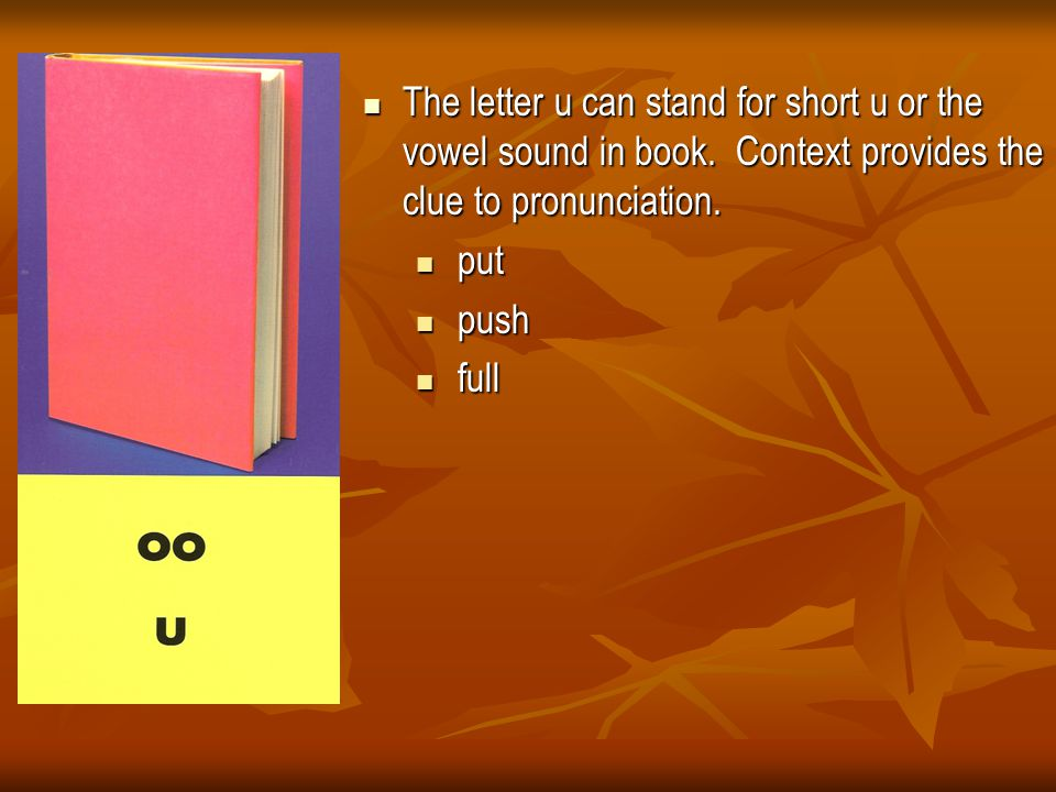 The letter u can stand for short u or the vowel sound in book