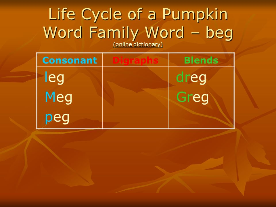 Life Cycle of a Pumpkin Word Family Word – beg (online dictionary)