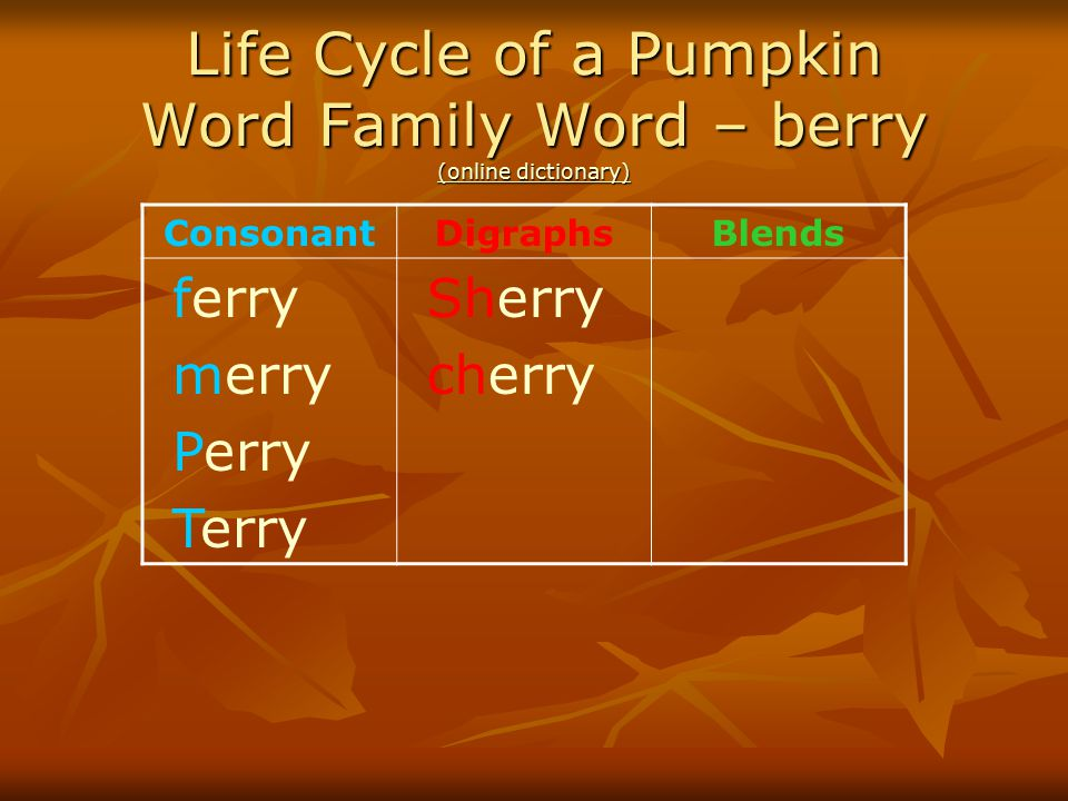 Life Cycle of a Pumpkin Word Family Word – berry (online dictionary)