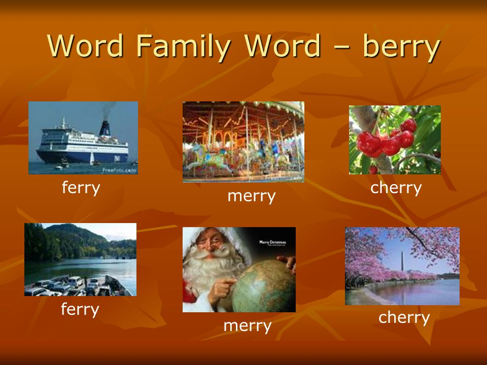 Word Family Word – berry