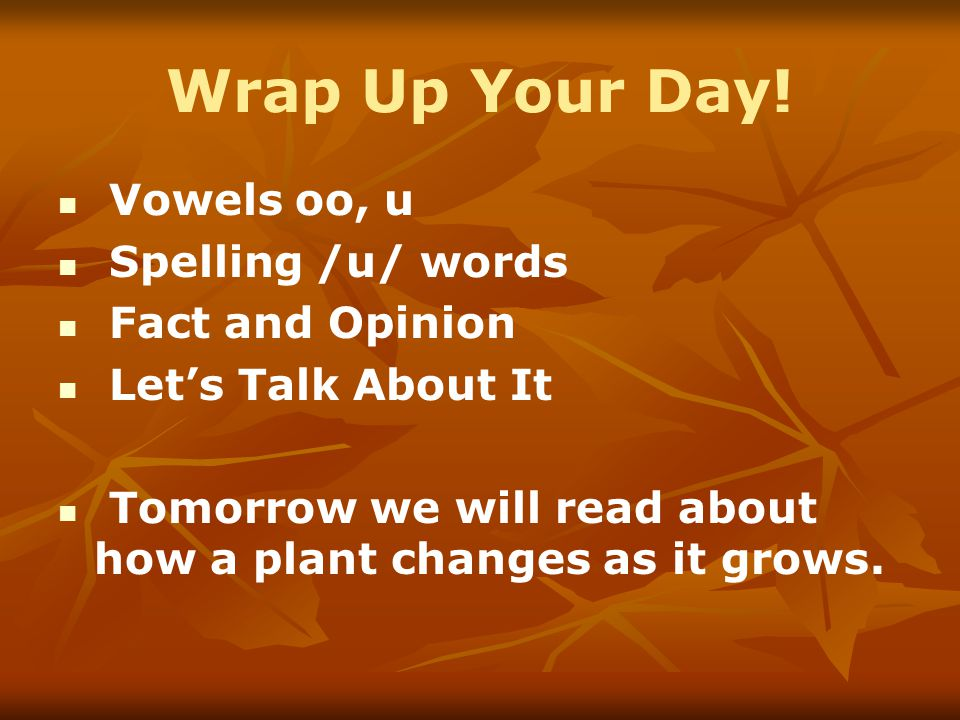 Wrap Up Your Day! Vowels oo, u Spelling /u/ words Fact and Opinion