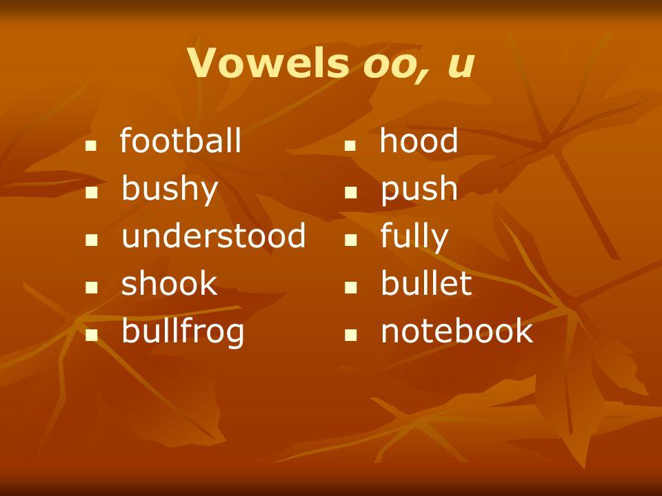 Vowels oo, u bushy understood shook bullfrog push fully bullet