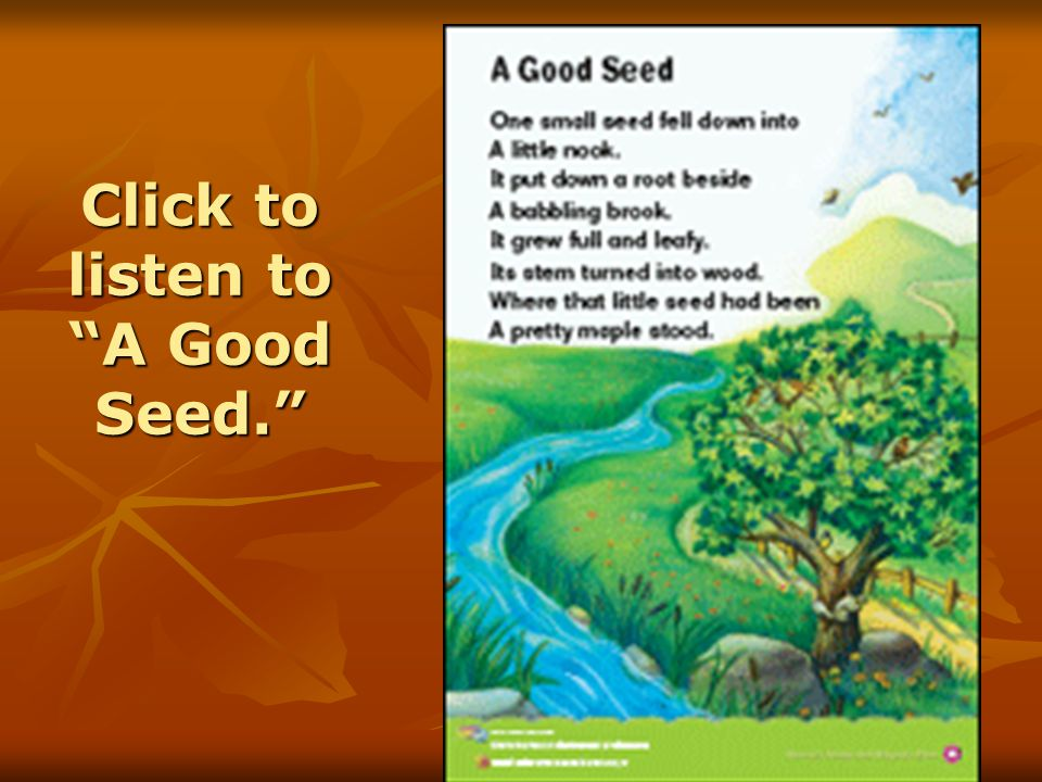 Click to listen to A Good Seed.