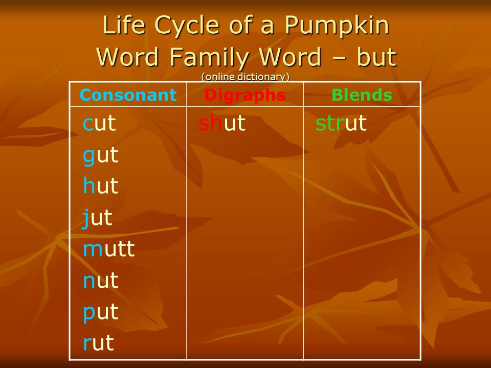 Life Cycle of a Pumpkin Word Family Word – but (online dictionary)