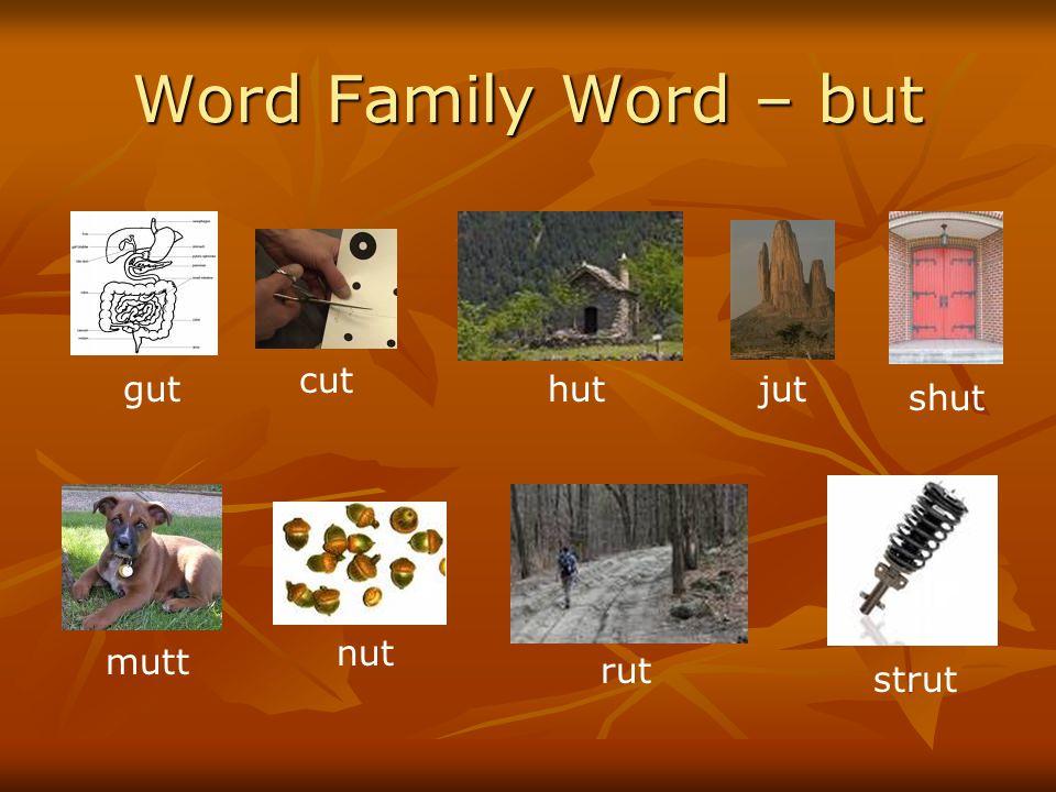 Word Family Word – but cut gut hut jut shut nut mutt rut strut