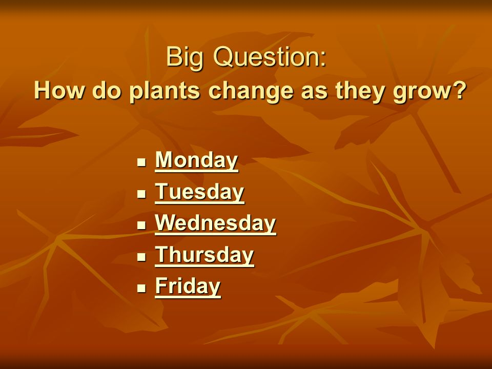 Big Question: How do plants change as they grow