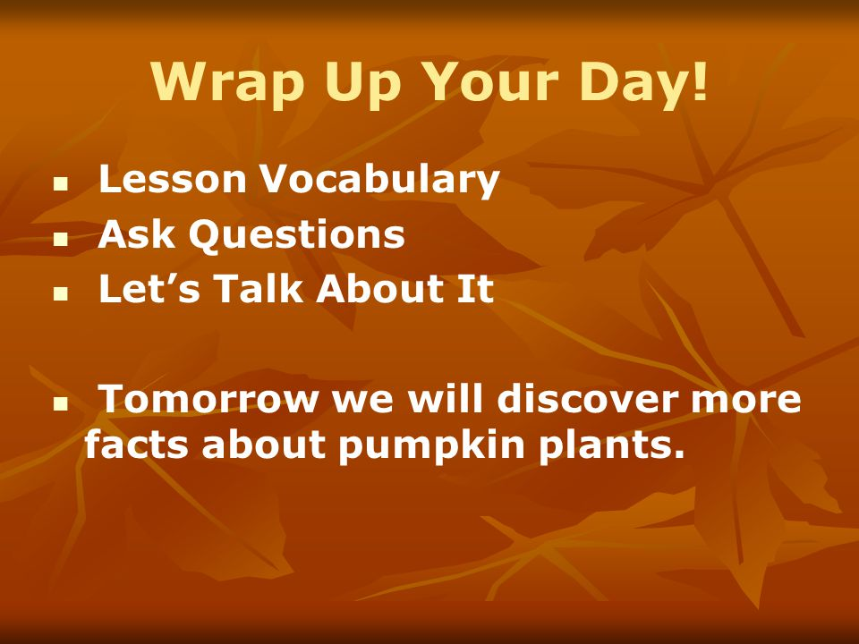 Wrap Up Your Day! Lesson Vocabulary Ask Questions Let's Talk About It