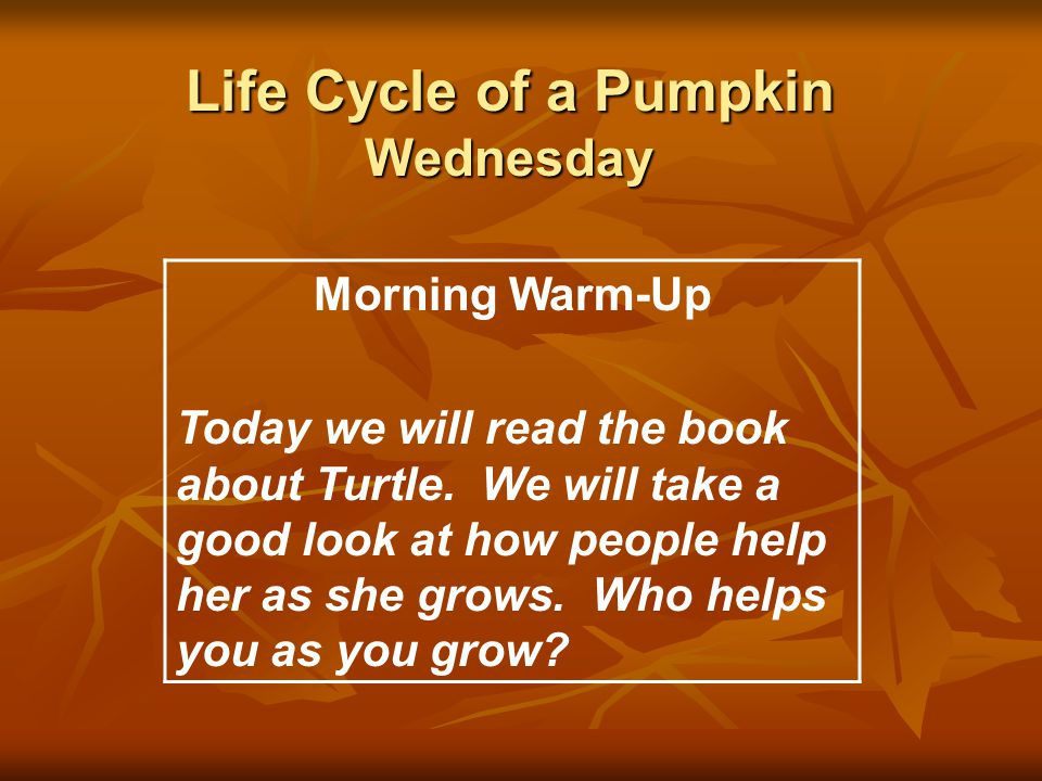 Life Cycle of a Pumpkin Wednesday