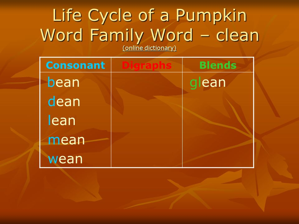 Life Cycle of a Pumpkin Word Family Word – clean (online dictionary)