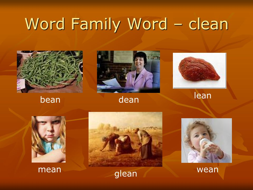 Word Family Word – clean