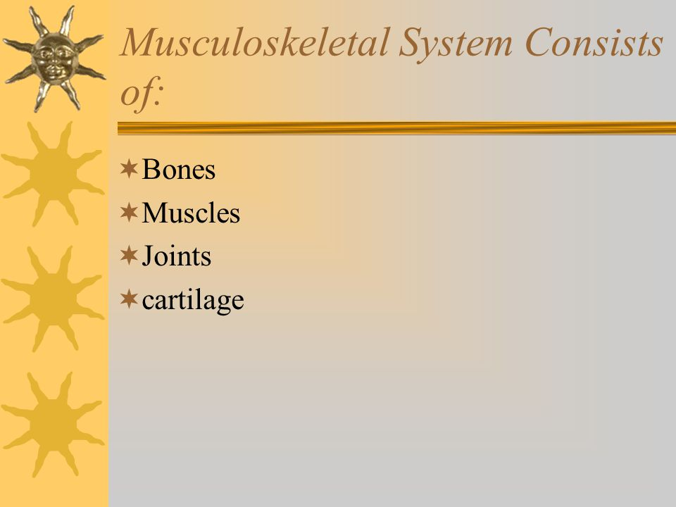 Musculoskeletal System Consists of: