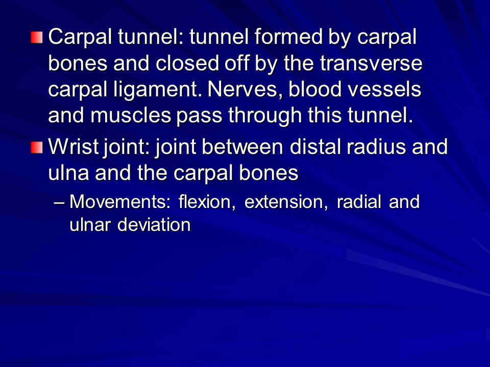 Wrist joint: joint between distal radius and ulna and the carpal bones