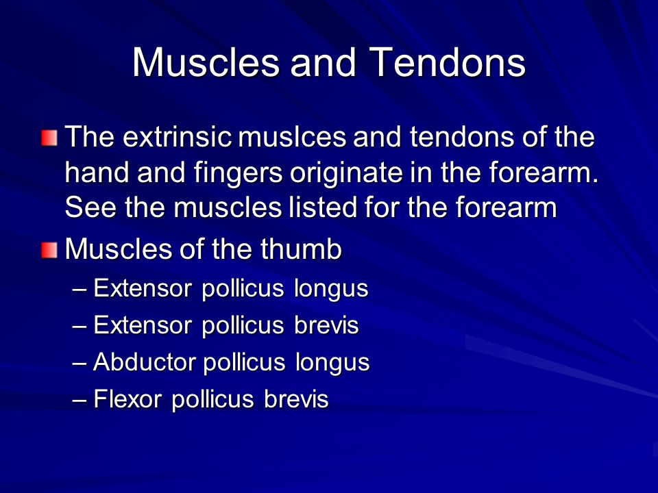 Muscles and Tendons The extrinsic muslces and tendons of the hand and fingers originate in the forearm. See the muscles listed for the forearm.