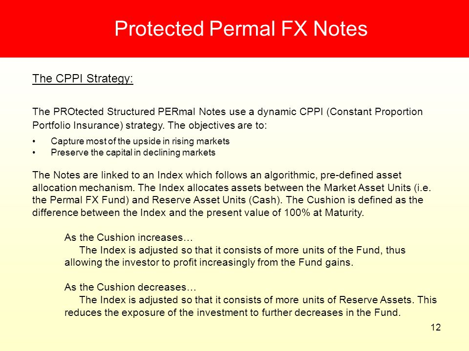 Protected Permal FX Notes
