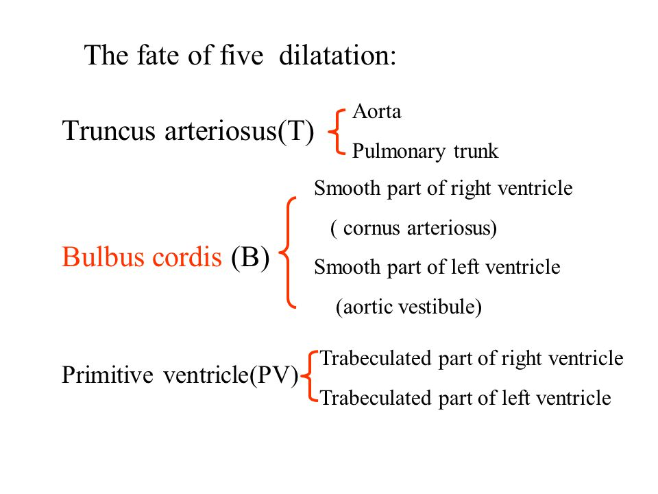 The fate of five dilatation: