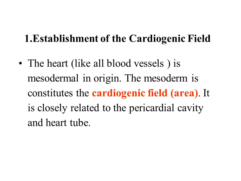 1.Establishment of the Cardiogenic Field
