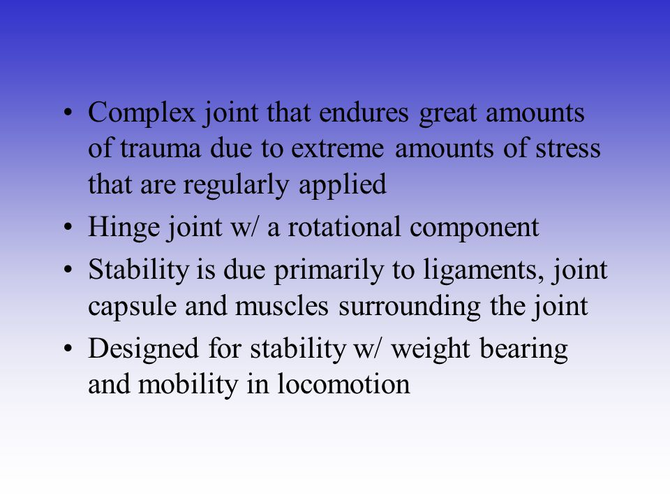 Complex joint that endures great amounts of trauma due to extreme amounts of stress that are regularly applied