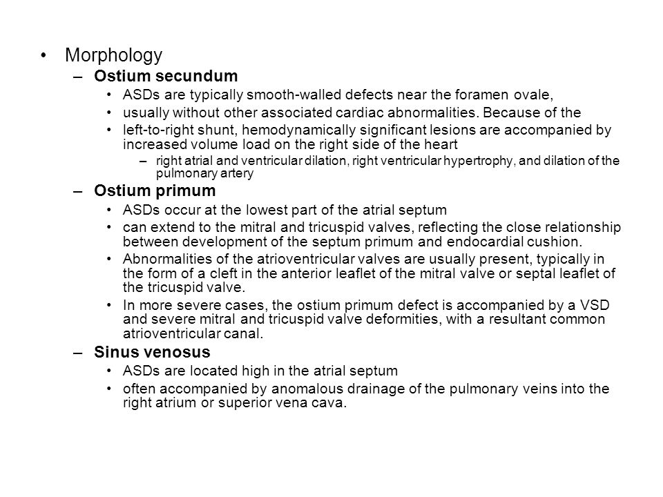 Morphology Ostium secundum Ostium primum Sinus venosus