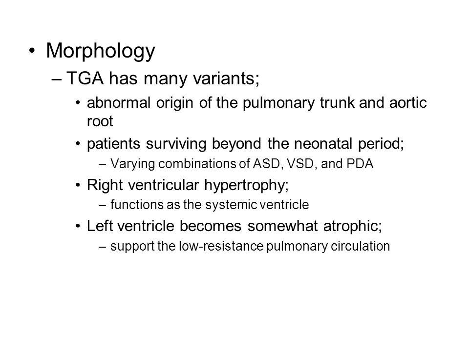 Morphology TGA has many variants;