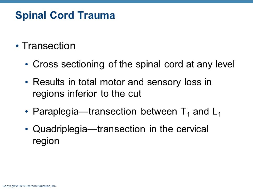 Spinal Cord Trauma Transection