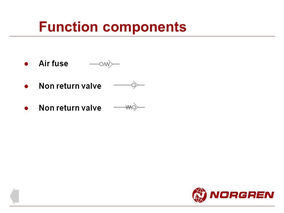 Function components Air fuse Non return valve Non return valve