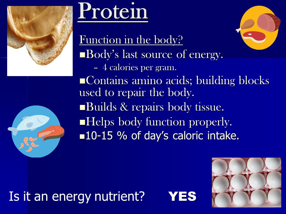 Protein Is it an energy nutrient YES Body's last source of energy.
