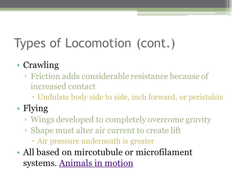 Types of Locomotion (cont.)