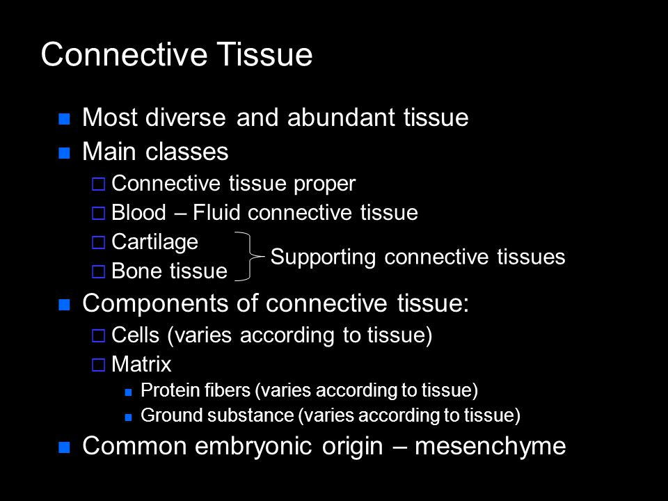 Connective Tissue Most diverse and abundant tissue Main classes