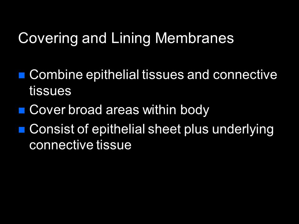 Covering and Lining Membranes