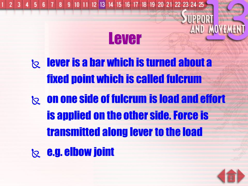 Lever lever is a bar which is turned about a fixed point which is called fulcrum.
