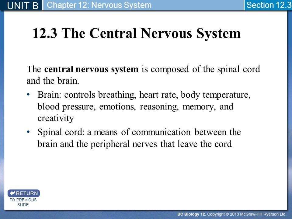 12.3 The Central Nervous System