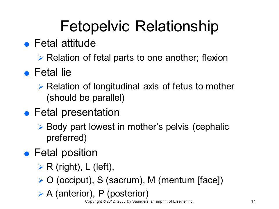 Fetopelvic Relationship