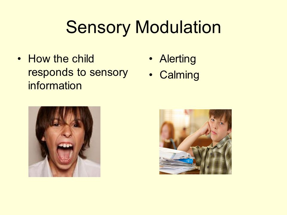Sensory Modulation How the child responds to sensory information