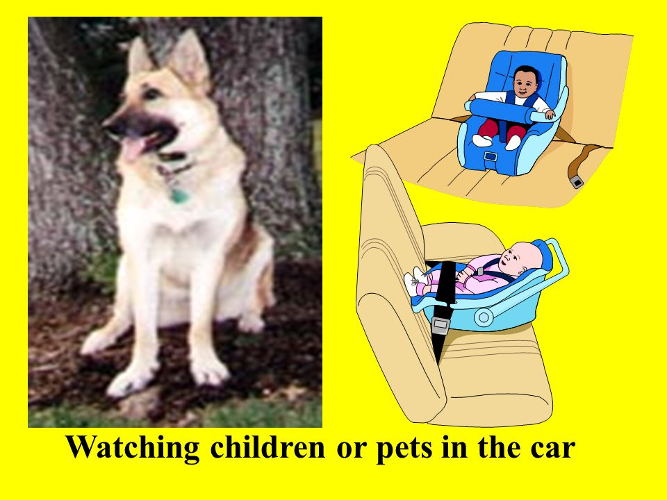 Watching children or pets in the car