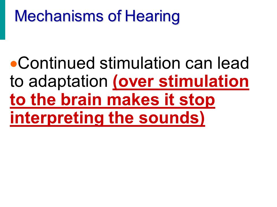 Mechanisms of Hearing Continued stimulation can lead to adaptation (over stimulation to the brain makes it stop interpreting the sounds)