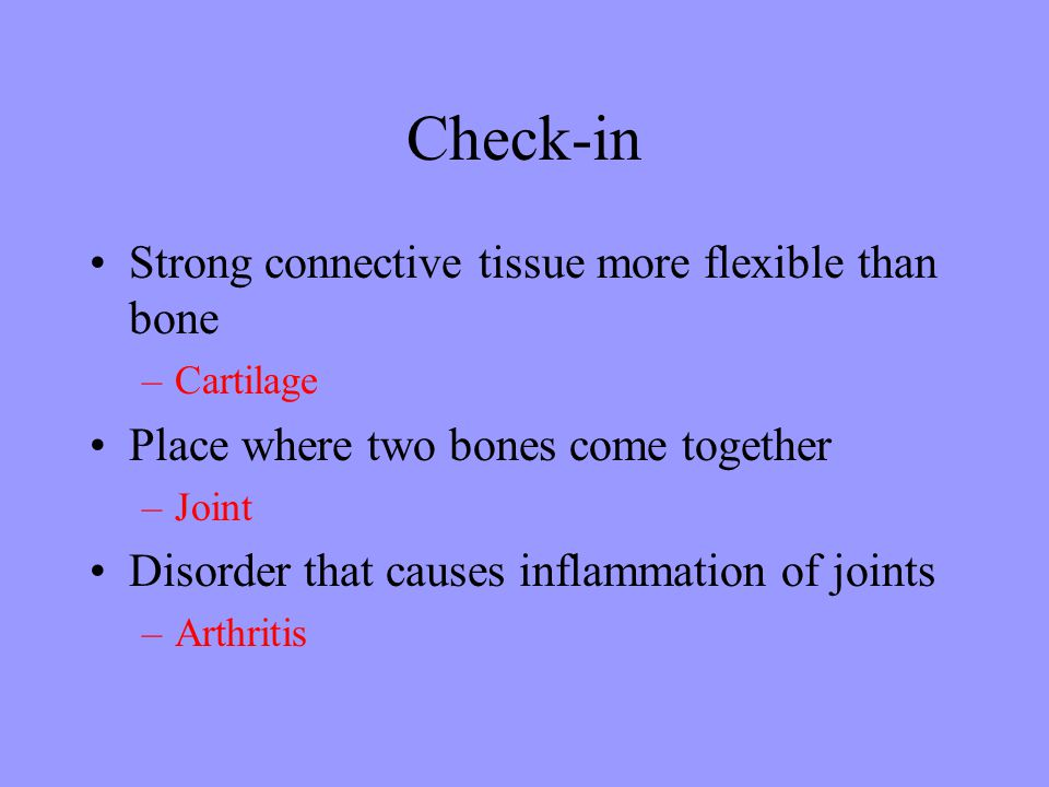 Check-in Strong connective tissue more flexible than bone