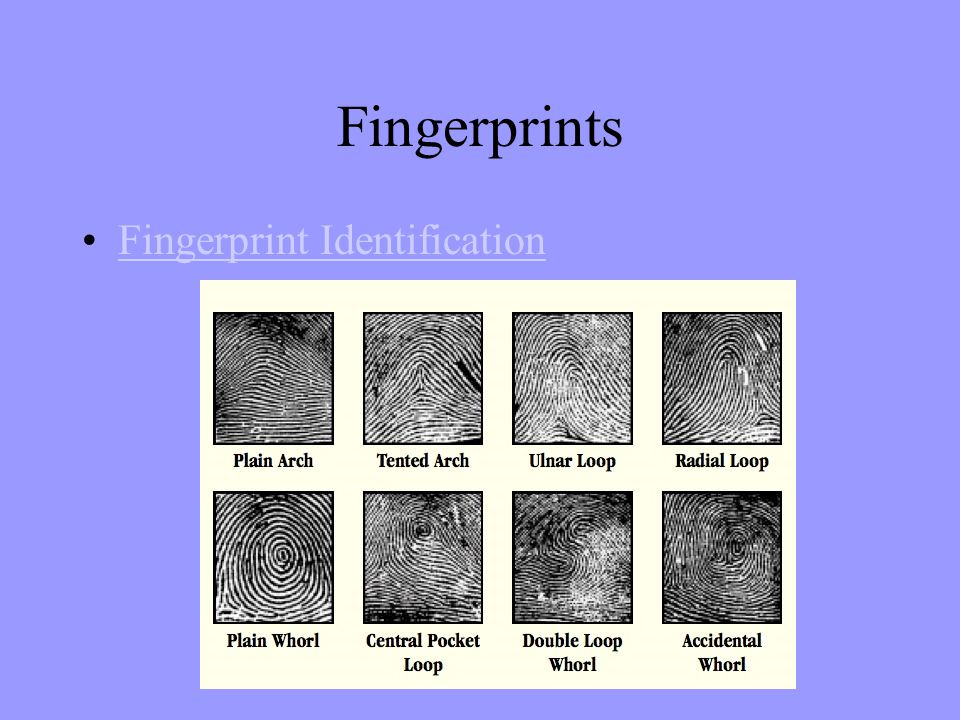 Fingerprints Fingerprint Identification