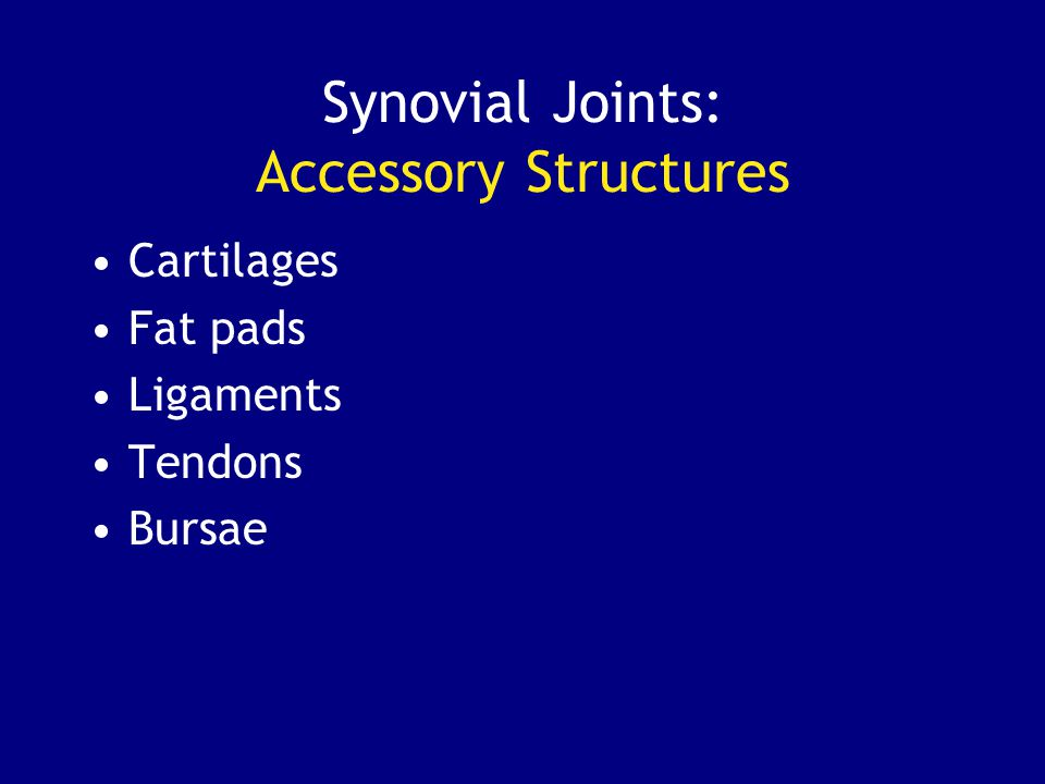 Synovial Joints: Accessory Structures