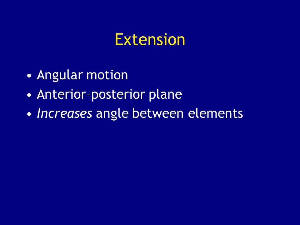 Extension Angular motion Anterior–posterior plane