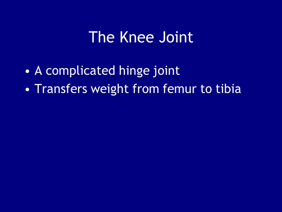 The Knee Joint A complicated hinge joint