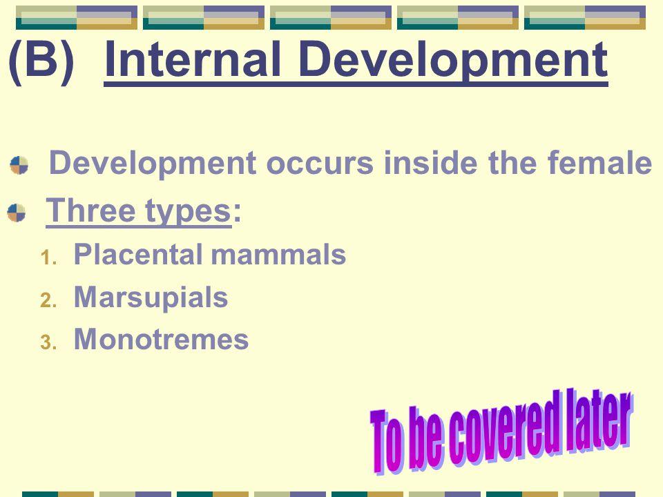 (B) Internal Development