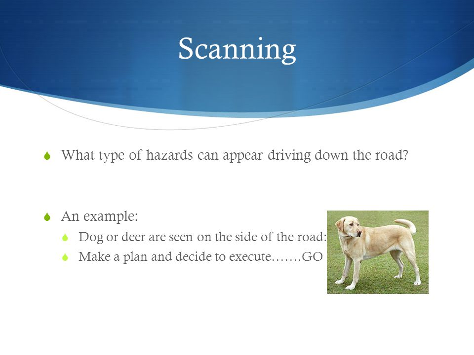 Scanning What type of hazards can appear driving down the road