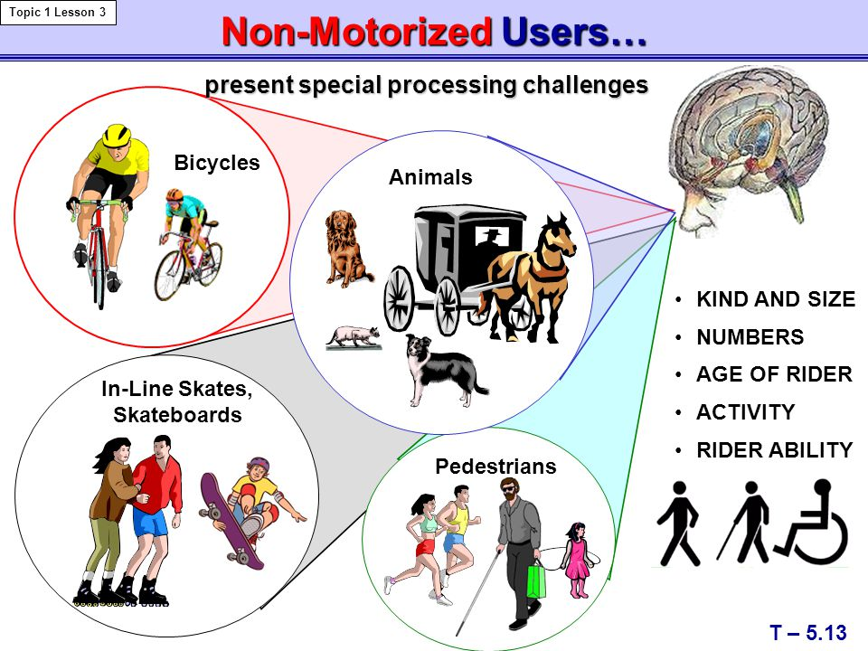 Non-Motorized Users… present special processing challenges Bicycles