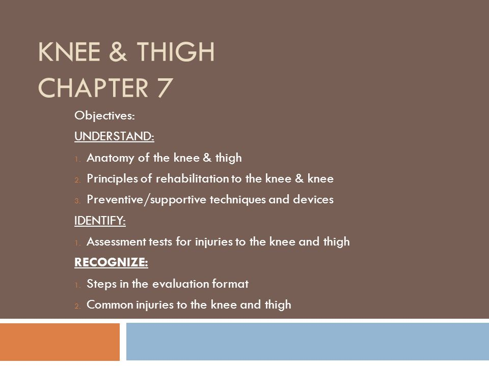 Knee & Thigh Chapter 7 Objectives: UNDERSTAND: