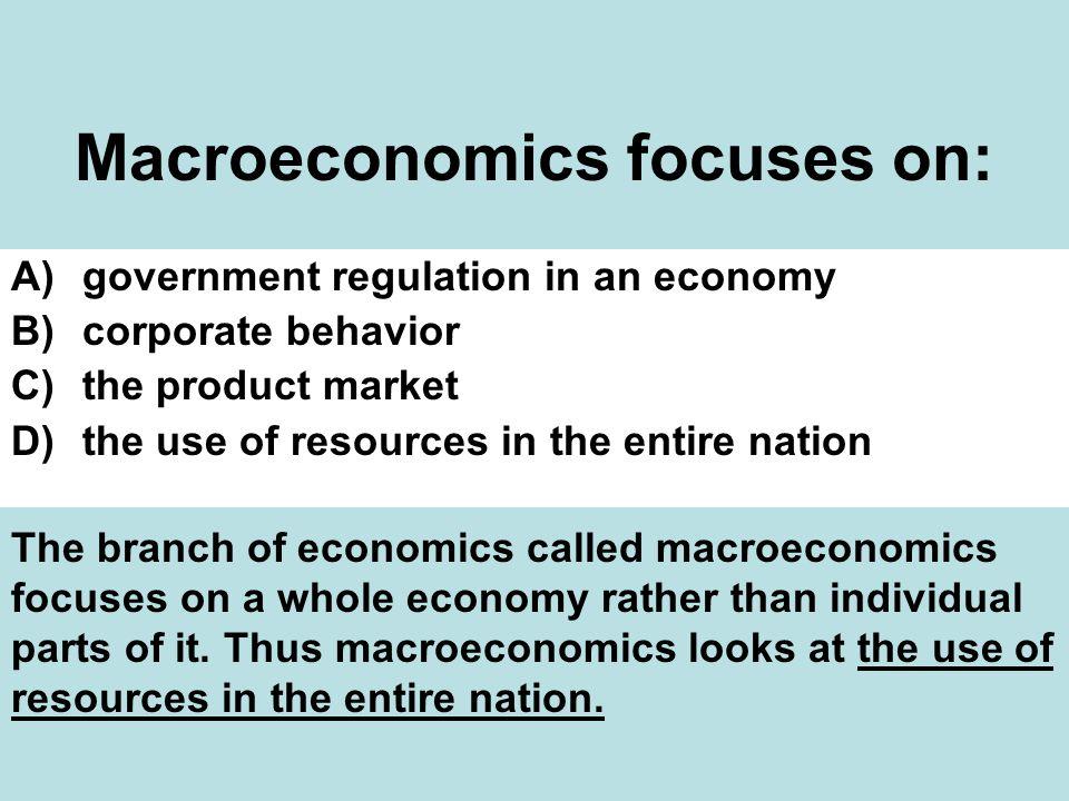Macroeconomics focuses on:
