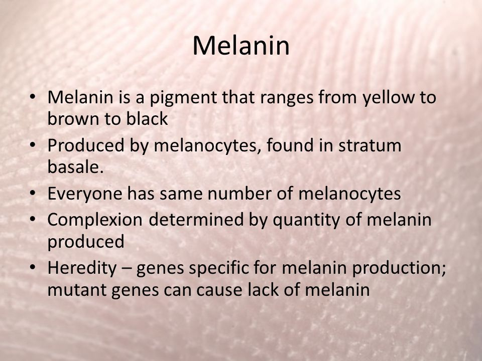 Melanin Melanin is a pigment that ranges from yellow to brown to black