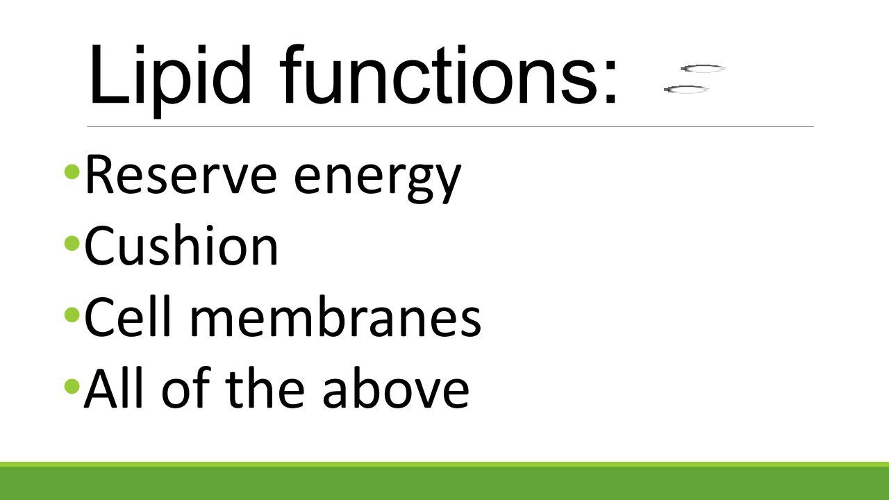 Lipid functions: Reserve energy Cushion Cell membranes
